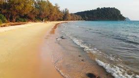 E 好的热带沙滩看法与绿色可可椰子树的 假日和假期 ?? 股票录像