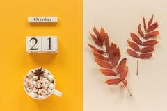 E 木日历10月21日,杯子可可粉用蛋白软糖和在黄色灰棕色的红色黄色秋叶 免版税图库摄影
