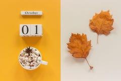 E 木日历10月1日,杯子可可粉用蛋白软糖和在黄色米黄背景的黄色秋叶 免版税库存图片