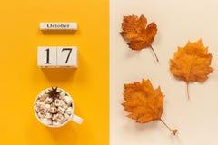 E 木日历10月17日,杯子可可粉用蛋白软糖和在黄色米黄背景的黄色秋叶 免版税库存照片