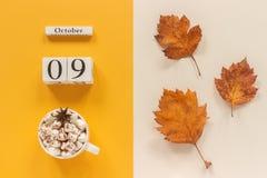 E 木日历10月9日,杯子可可粉用蛋白软糖和在黄色米黄背景的黄色秋叶 免版税库存照片
