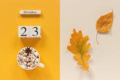 E 木日历10月23日,杯子可可粉用蛋白软糖和在黄色米黄背景的黄色秋叶 图库摄影