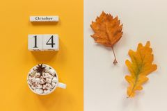 E 木日历10月14日,杯子可可粉用蛋白软糖和在黄色米黄背景的黄色秋叶 库存照片