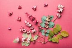 E 样式由秋天狂放的莓果和叶子制成 库存图片