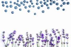 E 淡紫色花和蓝莓嘲笑  复制空间 免版税库存照片