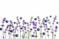 E 淡紫色花和蓝莓嘲笑  复制空间 库存照片