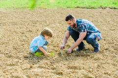 E ?? 种植在地面的父亲和儿子花 r ?? 库存图片