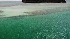 E 绿色热带海岛美妙的寄生虫视图在镇静蓝色海中部有珊瑚的在水下 影视素材