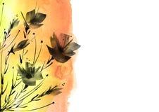 E 鸦片,在白色被隔绝的背景的野花黑剪影花花束  花卉水彩 库存例证