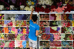 E Fotos de Stock Royalty Free