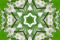 E Abstrakter Kaleidoskophintergrund r lizenzfreie abbildung