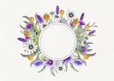 E akwarela kwiatu przygotowania Kartka z pozdrowieniami szablonu projekt zaproszenie zdjęcie royalty free