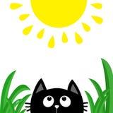 E Baisse de rosée d'herbe verte Personnage de dessin animé mignon Animal de Kawaii Carte de chéri Photo stock