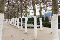 E 02 19: Bomen op onderstel van kunsten Brussel stock foto