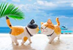 E Cat Model fotos de stock