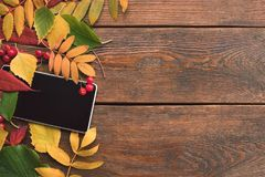 E-commerce autumn leaves wood background concept Royalty Free Stock Image