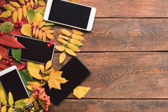E-commerce autumn leaves wood background concept Stock Images