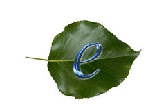 E-Commerce sign on green leaf Royalty Free Stock Images