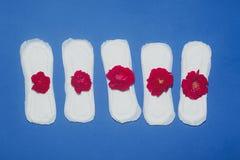 E Concept kritieke dagen, menstruele cyclus, periodedagen, PMS royalty-vrije stock afbeelding