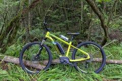 E-cykel av det spanska märket Orbea och den Keram 20 modellen royaltyfri foto