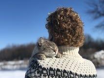 E De kat werd verloren buiten op a royalty-vrije stock fotografie