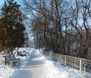 E De winter sneeuw zonnige ochtend Royalty-vrije Stock Foto's