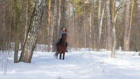 E Een vrouw die een paard berijden op een sneeuwgrond stock videobeelden