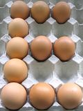 E for Egg. Chicken eggs arranged to form the letter E royalty free stock photo