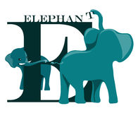 E (elephant) Stock Photo