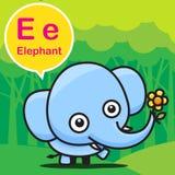 E Elephant color cartoon and alphabet for children to learning v Stock Photos