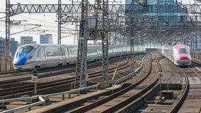 E7 en de treinen E6 van de Reekskogel (Hoge snelheid of Shinkansen) Stock Afbeelding