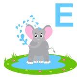 E für Elefanten Scherzt Alphabet Lizenzfreie Stockfotografie