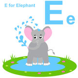 E für Elefanten Scherzt Alphabet Stockbilder