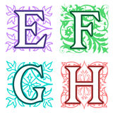 E, F, G, H, alphabet letters floral elements Royalty Free Stock Photography