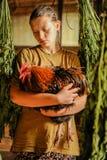 E Ferme de poulet E Photographie stock libre de droits