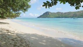 E fundo tropical do conceito da praia dos feriados do fim de semana, conceito dos feriados das férias vídeos de arquivo