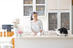 E gatto femminile dell'animale domestico fotografia stock