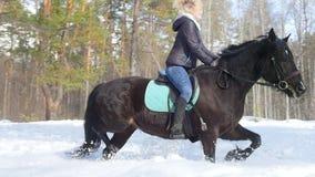 E Gelukkige vrouw die een paard berijden stock video