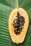 E Gesunde Lebensmittel-Lebensstil-Vitamin-Sommer-Reise-Ferien stockbilder
