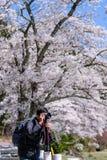 E grodowa cesky dziedzictwa krumlov sezonu wiosna przeglądać świat landmark fotografia stock