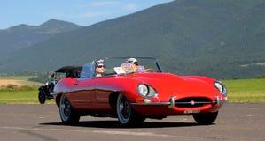 e-jaguartyp 1964 Royaltyfri Fotografi