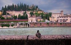 E l'Italie images libres de droits