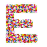 E, letra do alfabeto em flores diferentes Fotografia de Stock