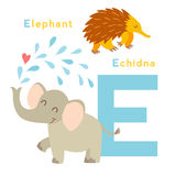 E letter animals set. English alphabet. Vector illustration Stock Photography
