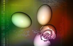 E-mail symbol inside egg Stock Photo