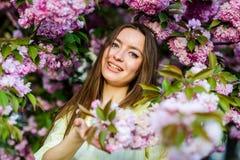 E menina na flor da cereja Floresc?ncia da ?rvore de Sakura mulher na flor da flor da mola Skincare e termas naughty fotografia de stock