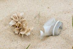 E Natureza e lixo sintético da garrafa junto na praia imagens de stock