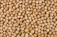 E nutrizione bio- Ingrediente di alimento naturale immagini stock