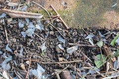 E Plástico frágil degradado como um poluente do solo do jardim foto de stock