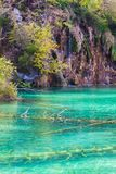 E Plitvice jeziora fotografia royalty free